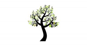 Family Tree Websites